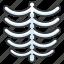 anatomy, body, bones, human, ribcage, skeleton icon