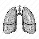anatomy, health, human, lung, medicine, organ icon