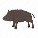 animal, boar, game, hunting, nature, ungulate, wild icon