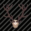booty, deer, head, horns, hunting, trophy icon