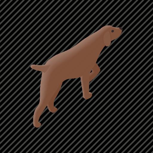 animal, canine, dog, hunter, hunting, isometric, pet icon