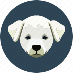 baby, dog, family, pet, pup icon