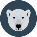 bear, pet, snow icon