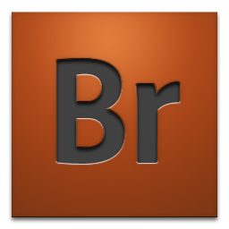 adobe, bridge, cs4 icon