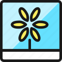 picture, flower