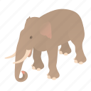 wildlife, african, elephant, illustration, animal, trunk, cartoon
