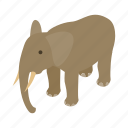 african, animal, elephant, india, indian, isometric, travel icon