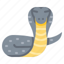 animal, cobra, india, king icon