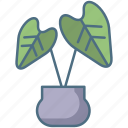 baby, rubber, plant, copy