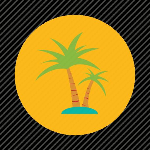 beach, coconut, island, palm, sea islands, tree, tropical icon