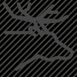 animal, deer, flesh, ingredient, meat, rudolph, venison icon