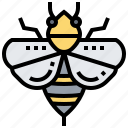 bee, honey, insect, pollinator, sting