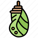 butterfly, caterpillar, cocoon, hanging, larvae icon