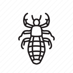 animal, bug, bugs, creature, insect, sucking louse icon