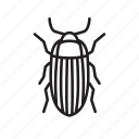 animal, bug, bugs, creature, insect, white salmon icon