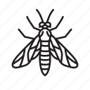 animal, bug, bugs, creature, insect, sawfly wasp icon