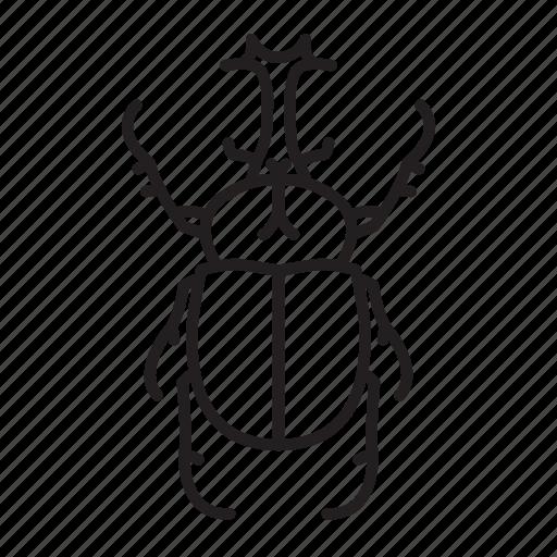animal, bug, bugs, creature, insect, rhinoceros beetle icon
