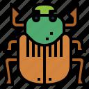 animal, beetle, bug, insect, scarab icon