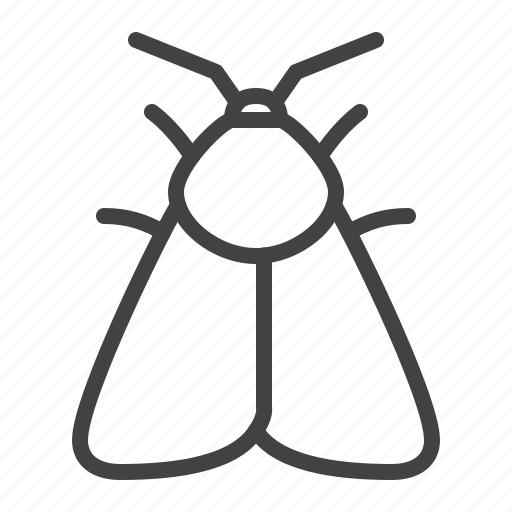 Butterfly, insect, moth, night icon - Download on Iconfinder