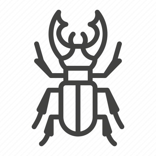 Beetle, bug, insect, stag icon - Download on Iconfinder