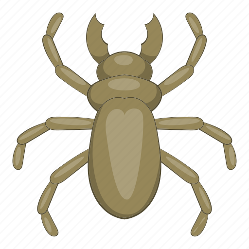 animal, beetle, cartoon, insect, pest, wood, woodworm icon