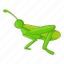 animal, bug, cartoon, grasshopper, insect, locust, nature icon
