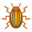 beetle, bug, cartoon, colorado, insect, pest, potato icon