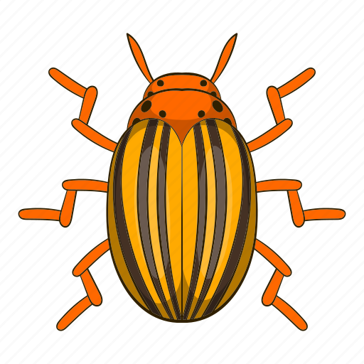 beetle, bug, cartoon, colorado, insect, pest, potato icon