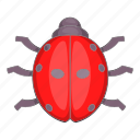 cartoon, ladybug, nature, objectillustration, red, summer icon