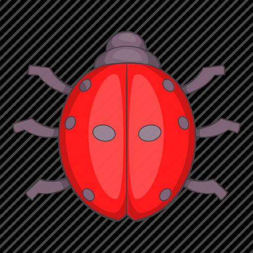 cartoon, ladybug, nature, objectillustration, red, summer icon
