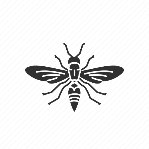 Animal, flying insect, insect, moth, pest, skipper, wasp icon - Download on Iconfinder