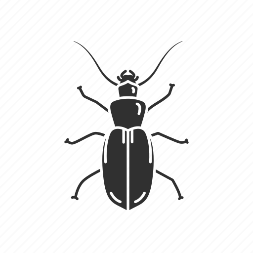 Animal, bloodsucker, fly, housefly, insect, pest icon - Download on Iconfinder