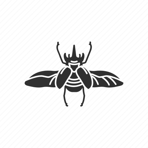 Animal, beetle, bug, insect, pest, scarab icon - Download on Iconfinder