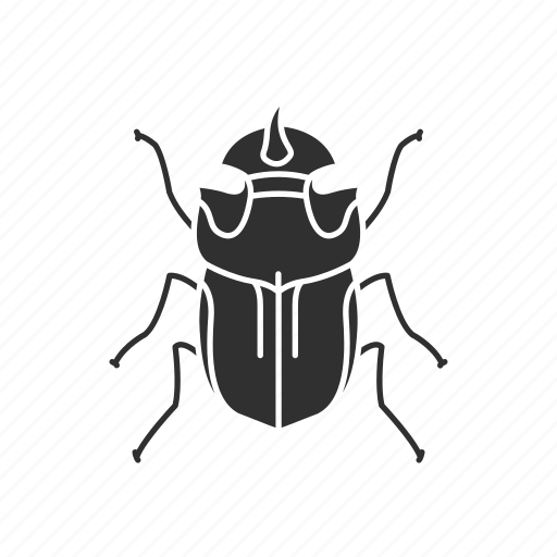 animal, beetle, dung beetle, dwellers, insect icon