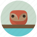 bird, figure, home, interior, interior design, owl, statue icon
