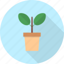 ecology, flower, furniture, interior, nature, plant, tree icon