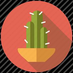 cactus, decoration, flower pot, interior icon