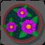 flower, plant, pot, rose icon