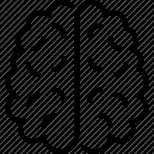 brain, education, hemisphere, knowledge, mind, science icon