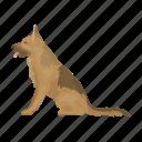 animal, breed, dog, german, guard, service, shepherd icon