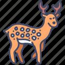 animal, antler, deer, forest, nature, wild, wildlife icon