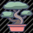 bonsai, garden, gardening, growth, japanese, leaf, tree
