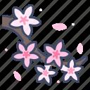 blossom, cherry, floral, flower, japanese, sakura, spring icon