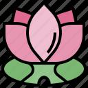 chakra, cultures, hinduism, lotus, meditation, yoga