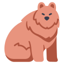 animal, bear, fur, nature, wild, wildlife icon