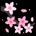 cherry, blossom, flower, japanese, spring, floral, sakura