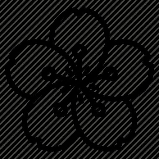 flower, japan, japaneses, sakura icon