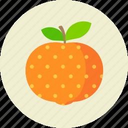 citrus, food, fruit, mandarine icon