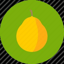 citrus, food, fruit, pomelo icon