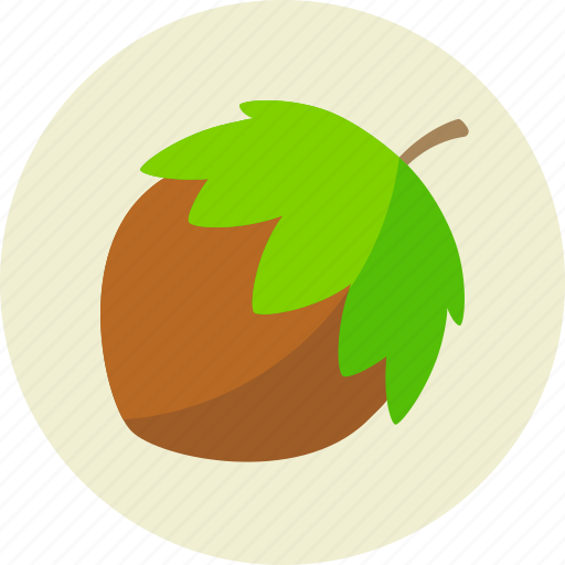 food, hazelnut, nut icon